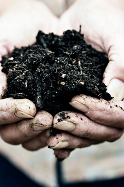 All Treat Farms Compost Services