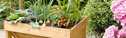 organic-potting-soil